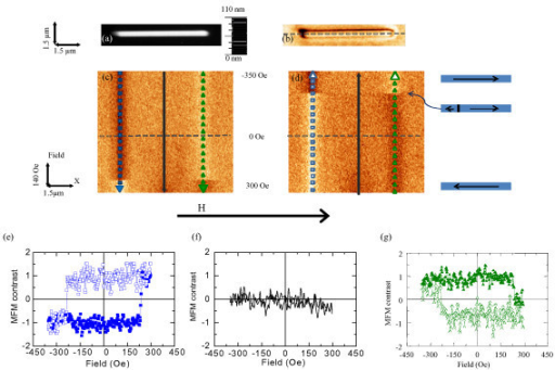 Topography and in-remanence magnetic image of a single-domain nanowire (type C). (a) Topography and (b) MFM image in remanence of nanowire C; (c)-(d) MFM-based mode images (e)-(g) profiles corresponding to hysteresis loops. The frequency shift contrast for all the MFM images is 8.5 Hz.