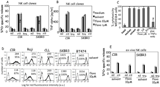 Effect of fluvastatin on ADCC and TNFα release triggered with rituximab or trastuzumab.(A). Effect of fluvastatin on ADCC triggered with humanized antibodies. Cytolytic activity of NK cell clones was analyzed upon treatment with fluvastatin in ADCC assay with rituximab (rit) or trastuzumab (tra) using the C1R CD20+ or SKBR3 HER2+ tumor cell lines at 2∶1 NK/tumor cell ratio respectively. Nil: basal cytolysis in absence of humanized antibody. Results are expressed as %51Cr specific release and are the mean±SD of 30 NK cell clones tested from six donors. (B). TNFα released in the NK-tumor cell co-culture after 24 h incubation was assessed by ELISA. Nil: basal level of TNFα produced by unstimulated NK cell clones. Results are expressed as pg/ml and are the mean±SD of TNFα present in SN from 15 NK cell clones. (C). Cytotoxic effect of TNFα released by NK cells in co-cultures with CIR and rituximab or with SKBR3 and trastuzumab antibody. Cytotoxicity was assessed on WEHI164 cell line sensitive to TNFα-mediated killing. In some experiments to block the cytotoxic effect of TNFα a saturating amount of anti-TNFα polyclonal antibody (5 µg/ml) was added (medium plus anti-TNFαAb). *p<0.0001. (D). Expression of CD20 on the cell surface of C1R, Raji and CLL cells (one patients out of ten analyzed) or HER2 on SKBR3 and BT474 breast adenocarcinomas cell lines upon incubation for three days with solvent (upper panels) or 10 µM of fluvastatin (lower panels). Cells were labelled with either anti-CD20 mAb or anti-HER2 mAb followed by alexafluor647 conjugated isotype specific GAM (thick lines). Thin line: cells labelled with an unrelated mAb matched for isotype. Results are expressed as Log far red fluorescence intensity (a.u.) vs number of cells and are representative of three independent experiments for CIR, Raji, SKBR3 and BT474 cell lines or 10 CLL patients. (E). ADCC mediated by ex-vivo NK cells incubated for 36 h with solvent or 10 µM fluvastatin, as indicated, of CIR or SKBR3 cell lines untreated (white columns) or treated with fluvastatin (for three day at 10 µM, black columns). Results are expressed as %51Cr specific release and are the mean±SD of 6 donors of NK cells.