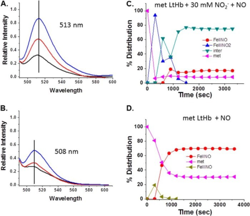 "Changes in the DAF-FM fluorescence emission for LtHb solutions. The increase and the shift in the emission spectrum of DAF-FM with time when the fluorophore (5 μm final concentration) was added to a solution of LtHb (0.3 mm) are shown. A, metLtHb to which was added nitrite and NO. Black line, initial emission spectrum upon addition of 5 μm DAF to the LtHb solution; red line, change in the emission after 20 min; blue line, change in emission after 40 min. B, a control ferrous NO sample in the absence of nitrite as described under ""Experimental Procedures."" Black line, initial emission spectrum upon addition of 5 μm DAF; red line, change in the emission after 20 min; blue line, change in emission after 40 min. C, the evolution of the population distribution profile for the sample prepared to promote the formation of the intermediate used with DAF-FM as described under ""Experimental Procedures."" D, the comparable evolution of the population distribution profile for the control sample to which DAF-FM was added. inter, intermediate."