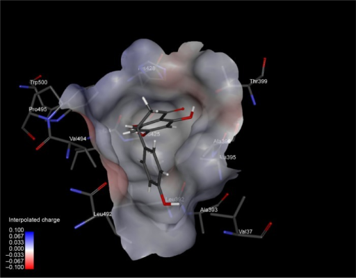 An inside view of binding pocket of HCV-NS5B, with a small drug molecule (naringenin) firmly bound.Note: Interpolated charge (color intensity from blue to red) of binding pocket residues (in sticks) is represented.Abbreviations: HCV, hepatitis C virus; NS5B, nonstructural protein 5B.