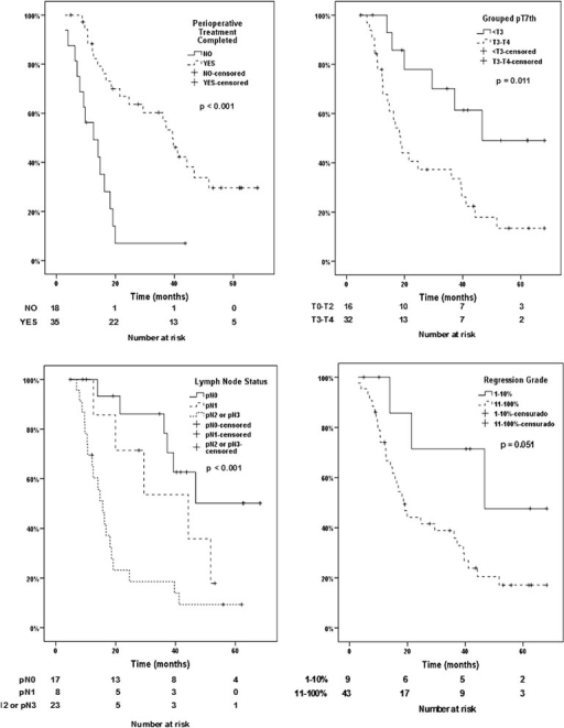 Disease-specific survival of patients according to completion of perioperative chemotherapy, the lymph node status, depth of invasion and tumor regression grade (major and minor responders)