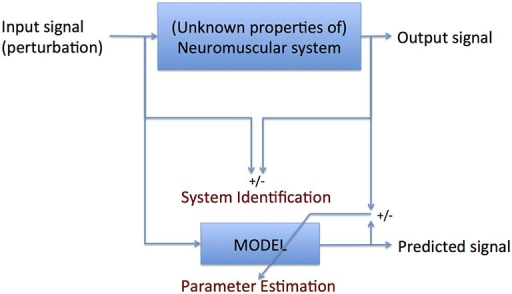 Principle of system identification (SI): formal description of the comparison between input and output signal parameter estimation (PE): translation of the formal description into meaningful parameters. SI requires no a priori knowledge of the system to be identified; PE does.