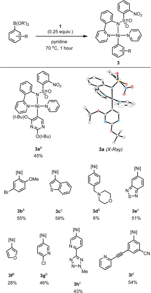 Synthesisof Nickel(II) σ-Aryl Complexes by Transmetalationfrom Boronic Acids and EstersYields of isolatedproducts aregiven.Synthesized fromarylboronic acid.Synthesizedfrom the arylboronic ester of 2,2-dimethyl-1,3-propanediol.