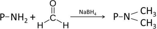 Reductive methylation, adapted from [207].