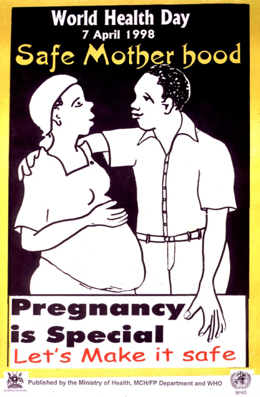 <p>Multicolor poster.  Title at top of poster.  Visual image is an illustration of a man standing with his arm around the shoulders of a pregnant woman.  Caption below illustration.  Publisher logos and information at bottom of poster.</p>