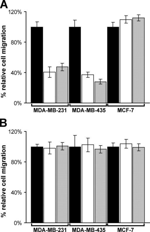 S1ED inhibitors disrupt αvβ3 integrin–dependent cell migration on VN. MDA-MB-231, MDA-MB-435, and MCF-7 cells in plating medium alone (black) or in plating medium containing either 20 μM GST-mS1ED (white) or 250 μg/ml mS1ED pAbs (gray) were seeded on polycarbonate filters coated with either 10 μg/ml VN (A) or FN (B) in a modified Boyden chamber. After 16 h, cells that migrated through the filter in response to 10% FBS in the lower chamber were quantified by colorimetric staining. The error bars represent the SEM from three independent experiments.