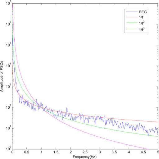 The power spectral density of a typical EEG channel with superimposed 1/fγ curves.