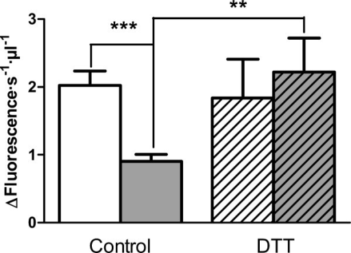 Effect of DTT on prolyl oligopeptidase levels in plasma from healthy and RR-MS patients. POP activity in plasma from healthy controls (white bar) and RR-MS patients (gray bar) after plasma pre-incubation in the absence, or presence (diagonal pattern), of DTT (5 mM). n = 10, p-values, **, 0.0024, ***, 0.0004.