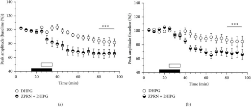 Age-related reduction of DHPG-LTD is reversed by the phosphodiesterase 5 inhibitor zaprinast (ZPRN). The time course of relative changes in field response amplitudes in corticostriatal slices from group II (a) and group III (b) mice after application of DHPG in the absence (DHPG) or presence of zaprinast (ZPRN + DHPG). Period of DHPG application is marked by open bar; ZPRN was applied 10 min before and together with DHPG (marked by filled bar). Significant differences between the DHPG-LTD magnitudes in the absence and presence of ZPRN are marked by asterisks, ***P < 0.001, t-test.