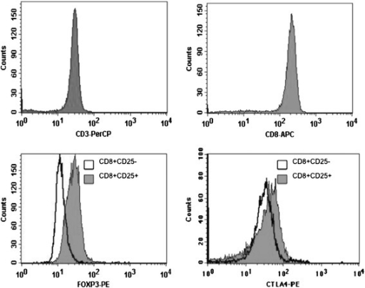 Purified human CD8+CD25+natural Tregs express FOXP3 and CTLA-4. Separated cell fractions, CD8+CD25+ and CD8+CD25− T cells, were analyzed by multicolor FACS using the following antibodies: anti-CD3 PerCP, anti-CD8-APC (BD biosciences) and anti-CD25-PE (Miltenyi Biotec) to assess purity for each isolation. Intracellular FOXP3 and cell-surface CTLA-4 were assessed using human anti-FOXP3-PE detection kit and anti-CTLA-4-PE (BD biosciences). Flow cytometry was performed using a FACSCalibur applying CellQuest software (BD Biosciences). CD3 and CD8 purity was above 97% among isolated CD8+ T cells. CD8+CD25+ nTregs express FOXP3 and CTLA-4 when compared to CD8+CD25− T cells.