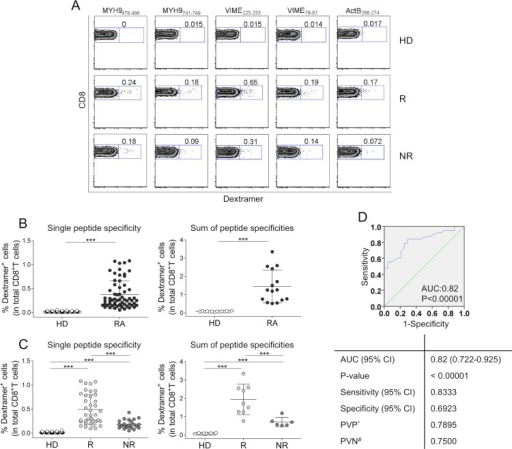 AE-specific CD8+ T cells predict RA patients who will (or will not) benefit from etanercept therapy (A-D).(A) Representative flow cytometry analysis of dextramer+CD8+ T cells specific to AE in an RA patient and an HD. Zebra plot analyses show the percentage of dextramer+CD8+ cells. (B) Percentage of dextramer+CD8+ cells in 14 HDs and 15 patients (each symbol represents the percentage of a single dextramer+CD8+ cell population) (left graph); sum of the percentages of all dextramer+CD8+ T cells detected in the single HD or patient (each symbol represents the sum of dextramer percentages in a single individual) (right graph). (C) Percentage of dextramer+CD8+ cells in 14 HDs, 9 Rs to etanercept, and 6 NRs (each symbol represents the percentage of a single dextramer+CD8+ cell population) (left graph); sum of the percentages of all dextramer+CD8+ T cells detected in the single HD, R, and NR (each symbol represents the sum of dextramer percentages in a single individual) (right graph). Analyses were performed at time 0 (before the start of therapy). Statistical analysis was performed with the Mann-Whitney test. **P < 0.001; ***P < 0.0001. (D) ROC curve analyses for R and NR patients. AUC = area under receiver operating characteristic curve. * = predictive value of positive test. # = predictive value of negative test.
