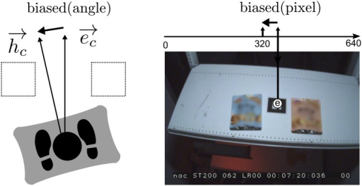 Body-orientationbias in real world coordinates (left) and head-mounted view (right): The body-orientation bias can be observed in the coordinates of the head-mounted view.