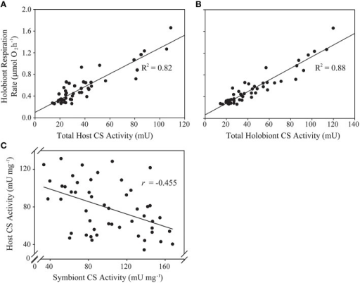 Predictive and correlative associations between animal host- and algal symbiont citrate synthase (CS) activity and holobiont respiration rate in a natural population of Exaiptasia pallida. (A) Linear regression analysis of total host CS activity (U) as a predictor of holobiont respiration rate (μmol O2 h−1); (B) Linear regression analysis of total holobiont CS activity (host + symbiont; U) as a predictor of holobiont respiration rate (μmol O2 h−1); (C) Pearson's correlation analysis of the relationship between host- and symbiont specific CS activities (U mg−1). All relationships are statistically significant at p < 0.001.