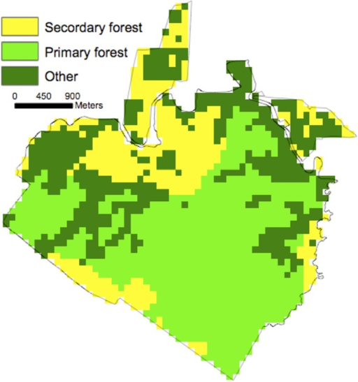 La Selva gridded (1 ha) land-use history classification.Primary denotes natural old-growth vegetation. Secondary denotes vegetation recovering from prior land-use (Organization for Tropical Studies, unpublished data).
