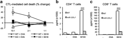 T cells from miR-155−/− mice exhibited impaired antiviral effector function. WT and miR-155−/− mice were immunized with DM-MHV via i.p. injection. a Animals were sacrificed 8 days p.i., and CD4+ and CD8+ T cells were isolated and pooled. The frequencies of total and virus-specific CD8+ T cells were determined by tetramer staining [96]. Equivalent numbers of virus-specific CTLs were added to target cells pulsed with either the immunodominant CD8+ T cell epitope within the spike (S) glycoprotein spanning residues 510-518 (S510-518, 50 μM) or control ovalbumin peptide (50 μM) at the indicated ratios, and lytic activity was determined as previously described [31, 96]. In addition, antigen recall responses to the immunodominant CD4 T cell epitope (M133-147) (b) or CD8 T cell epitope S510-518 (c) was performed, and IFN-γ levels were determined by ELISA as previously described [96]. Data are representative of at least two independent experiments, with at least five mice from each group. *p < 0.05; ***p < 0.001