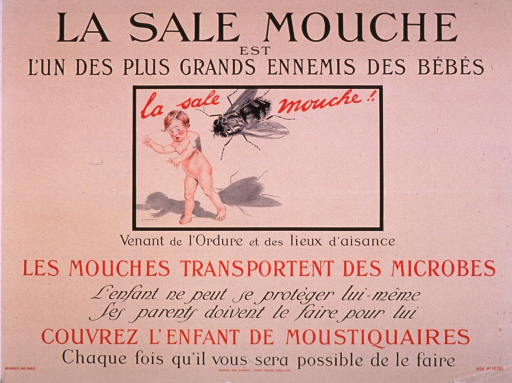 <p>Predominantly cream or discolored white poster with red and black lettering.  Title at top of poster.  Visual image is an illustration of a giant fly coming toward a child's back.  The child appears to be running away and looks somewhat distressed.  Notes and additional text below illustration address flies as disease carriers and urge protecting children with mosquito netting whenever possible.  Publisher information at bottom of poster.</p>