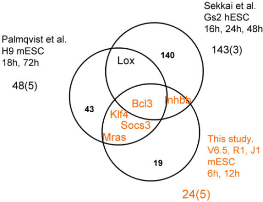 Correspondence between down-regulated genes from this study with two previous studies of mESC differentiation. Venn diagram showing the genes found in at least two studies. We note that the cell lines, conditions, and gene selection procedures for these three studies are very different. Palmqvist et al.: 48 genes from Table 3 in [7]. Sekkai et al.: 143 genes from Table S1 of [6]. This study: 24 genes down-regulated in at least two cell lines at 6 hr or 12 hr.