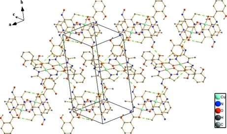 The extended two-dimensional layer of the title complex, dotted green lines represent intermolecular hydrogen bonding. Only H atoms participating in hydrogen bonds are shown.