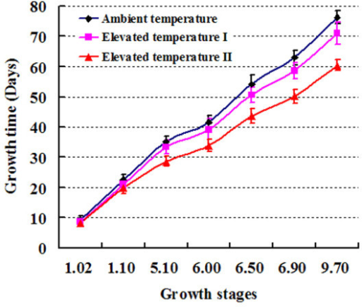 "Growth curves of Arabidopsis grown at three temperatures. The growth stages 1.02, 1.1, 5.1, 6.00, 6.50, 6.90, and 9.70 correspond to ""2 rosette leaves >1 mm in length"", ""10 rosette leaves >1 mm in length"", ""first flower buds visible"", ""first flower open"", ""50% of flowers to be produced have opened"", ""flowering complete"", and ""senescence complete"", respectively (Please refer to Table two (p. 1501) and Figure two (p. 1502) of Boyes et al. 2001 [22])."