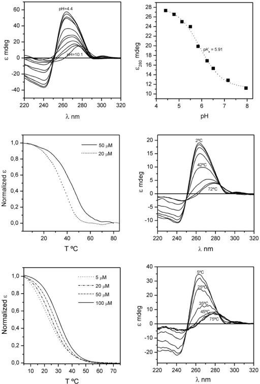 Top: series of CD spectra of d<pTCGTTTCGTT> at different pH (left) and pH titration (right), [oligonucleotide] = 20 µM, T = 5°C. Middle: CD melting curves of d<pTCGTTTCGTT> at different oligonucleotide concentration (left) and series of CD spectra at different temperature, [oligonucleotide] = 50 µM (right). Bottom: CD melting curves of d(TCGTTTCGT) at different oligonucleotide concentration (left) and series of CD spectra at different temperature, [oligonucleotide] = 50 µM (right). Buffer conditions: 20 mM AcONa, pH 4.5, 200 mM NaCl.