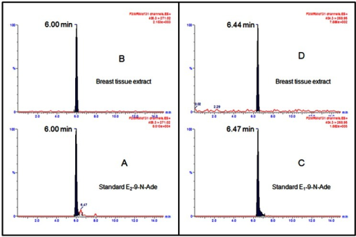 Breast tissue samples were homogenized and extracted as described in Materials and Methods.UPLC–MS/MS chromatogram of standard E1(E2)-9-N-Ade (A, C) and breast tissue extract (B, D).