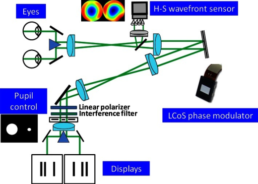 Schematic diagram of the binocular adaptive optics visual simulator showing the main components. The setup includes a single Hartmann-Shack wavefront sensor and a single correcting device for measurement and manipulation of aberrations from the two eyes. The system incorporates two microdisplays for producing retinal disparity, therefore creating stereopsis.