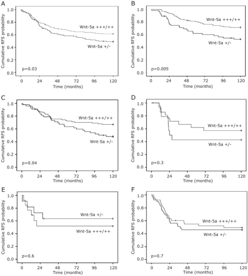 Recurrence-free survival according to Wnt-5a expression.Kaplan–Meier estimates of recurrence free survival according to Wnt-5a status in A. whole cohort, B. ER+ patients. C–F. Kaplan–Meier estimates of recurrence-free survival according to Wnt-5a status stratified for breast cancer subtype. C. Luminal A, D. Luminal B, E. HER2+, and F. TNBC.