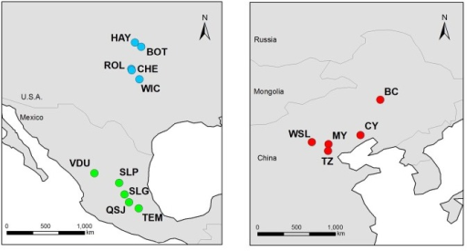 Map showing the location of the 15 sampled populations of Solanum rostratum used in this study.Left panel: Mexican (native, green circles) and U.S.A. populations from the U.S.A. (residence time >130 years, blue circles). Right panel: Chinese populations (residence time <31 years, red circles). Details of localities and population codes are provided in Table 1.
