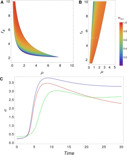Growth rates of patterning. (Top) Similar to that in Figure 3, we see the intersection of the volume of Figure 2A, with plane rh = 0.5 (A) and with the plane ra = 5 (B), but now the color scale depicts ωmax values instead of kmax. ωmax quantifies the speed of pattern appearance; for highervalues, one expects faster-forming patterns. (C) Pattern formationdynamics for the concentration of a at x = 25. Parameter values correspond to the white dots in panel B (D= 0.01, nH = 2, ra = 5, rh = 5, and with three different values of μ: 0.45 (greenline), 1.0 (red line), and 1.5 (blue line)).