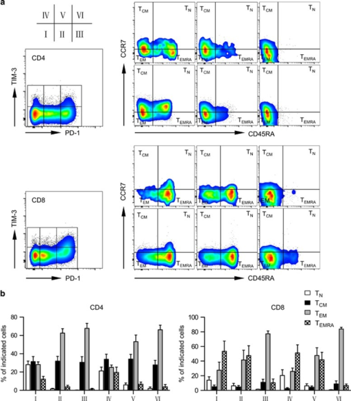 PD-1hiTIM3+ cells lose TEMRA in patients with leukemia relapse post transplant. Distribution of TN, TCM, TEM and TEMRA in T cells gated on each fraction of cells based on PD-1 and TIM-3 expression from relapse patients. (a) Representative dot plots from one relapse patient (09). (b) Summary data for five relapse patients (08, 09, 10, 11 and 12).