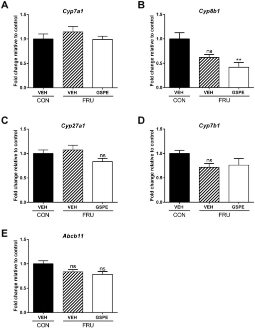 Hepatic expression of genes involved in bile acid biosynthesis and transport following treatments.Gene expression changes were analyzed for (A) Cyp7a1, (B) Cyp8b1, (C) Cyp27a1, (D) Cyp7b1, and (E) Abcb11. ** p<0.01.