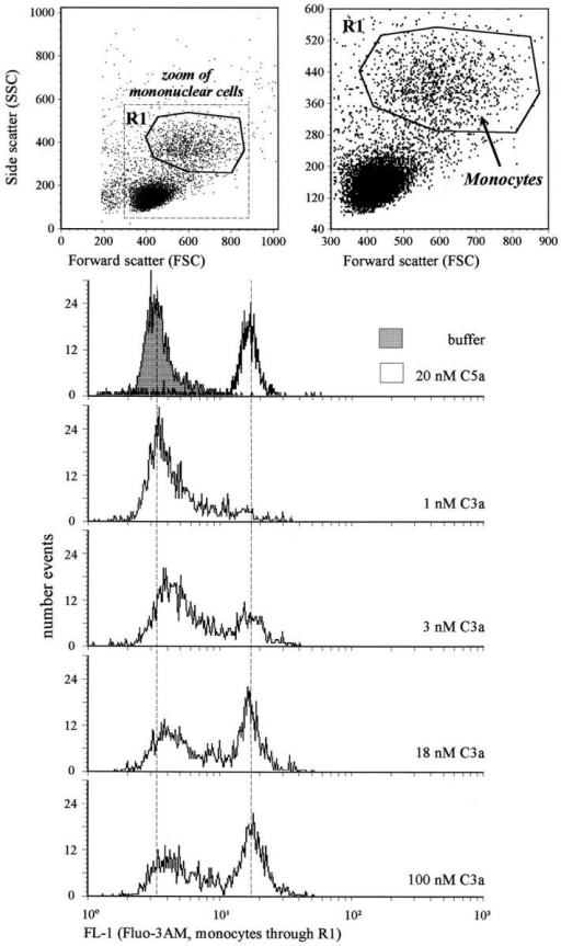 Human monocytes respond inhomogeneously to C3a.  PBMCs (no granulocytes within 1,000 stained cells) were loaded with  Fluo3-AM as fluorescence indicator of free cytosolic Ca2+. Monocytes  were gated as indicated in the upper panels. The histograms of the fluorescence intensity (FL-1) resulting ∼10 s after stimulation with buffer or  20 nM of C5a, and increasing concentrations of C3a, respectively, are depicted. The response of monocytes to the C3a analogue peptide P117 was  similar (data not shown).