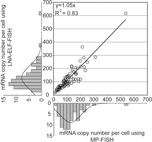 Quantitative analysis of mRNA copy number in single cells as determined by MP-FISH and LNA-ELF-FISH. Luciferase-MS2 transcripts were fluorescently labeled in HeLa cells by performing MP-FISH and LNA-ELF-FISH, simultaneously. IPLab acquisition software was used to acquire 3D images of both the MP signal (i.e. Cy3) and the ELF signal in 72 randomly selected cells. After 3D deconvolution of the images in IPLab using AutoQuant plug-in software, a 2D image was constructed using a maximum-intensity merged image. The total number of isolated signals was then counted in ImageJ using the particle analysis counter program. The marginal histograms show the distributions of mRNA copy numbers across the population of selected cells as determined by MP-FISH (bottom) and LNA-ELF-FISH (left), respectively.