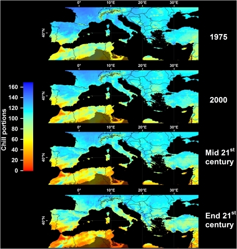 Modeled and projected Safe Winter Chill in the Mediterranean region, for 1975, 2000, the middle of the 21st century (middle), and the end of the 21st century (bottom).For each point in time, results are averaged over three greenhouse gas emissions scenarios and three Global Climate Models. Areas that are more than 5° away from the closest weather station, and areas with mean annual temperatures >20 or <°0C are shaded.