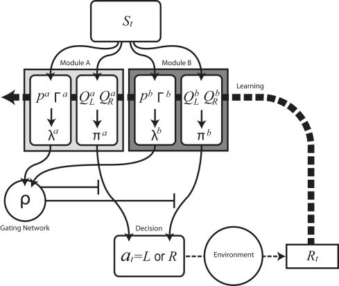 Schematic diagram of modular reinforcement learning (RL) model. Each module m produces a responsibility λm and a policy πm. Responsibility λm is calculated based on the accumulated squared prediction error Γm, which in turn is based on a comparison of a prediction pm of a feature of the environment with the actual feature (in this case the reward Rt). The module with greater λm is selected based on the softmax selection rule ρ, which can be seen as a description of a gating network. The modular policy πm assigns each module's probability of choosing each candidate action based on the modular action-value function Qm. The policy πm of the selected module determines the actual action at. The learning or updating of pm and Qm is performed only within the selected module using the global reward signal Rt.