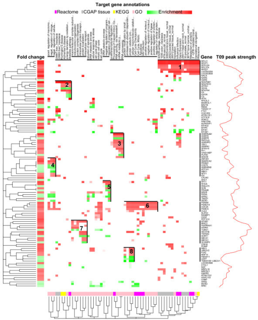 Co-functional modules of direct LXR target genes. Associations of LXR target genes with the annotations from Reactome, CGAP tissue EST expression, KEGG and GO databases clustered and visualized using heatmap.2 function from R-package gplots [38]. The y-axis columns indicate the annotations and x-axis rows the associated genes. Each association, depicted as a cell of the heat map, has been weighted using the multiplication of log2 FC of a gene (row) and -log10 P-value of annotation (column) enrichment highlighting the most important associations. Red and green color scales are used for up- and down-regulated genes, respectively. Both columns and rows have been clustered using agglomerative hierarchical clustering with asymmetric binary distance measure. The eight gene and annotation clusters cover the majority of the gene set. Indicated is also the LXR peak strength density graph, which summarizes the peak heights over the genes on the x-axis. For each gene the peak strength has been calculated as a sum of the log2 FEs for the highest peak from the close (± 100 kb) and distant region (± 0.1 to ± 1 Mb).
