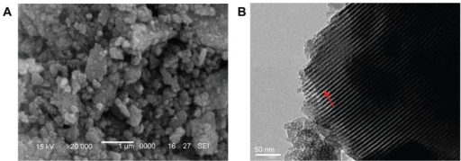 (A) Scanning electron microscopic and (B) transmission electron microscopic images of the morphology of mesoporous bioactive glass.Note: Arrow represents mesoporous channels.