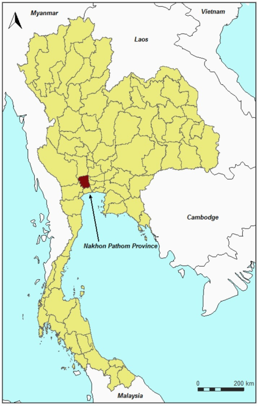Nakhon Pathom province in Thailand.