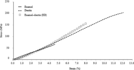 A typical stress–strain curve of the enamel, dentin, and ED specimens.ED: enamel–dentin.