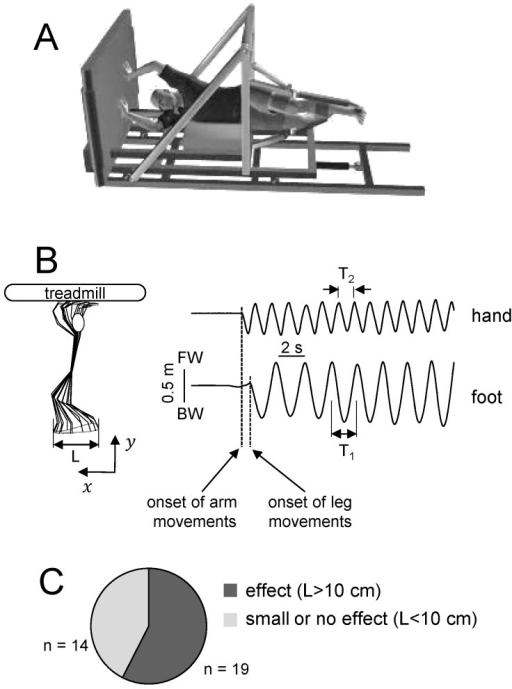 Experimental setupa schematic illustration of the open i a schematic illustration of the horizontal body weight support system the ccuart Image collections