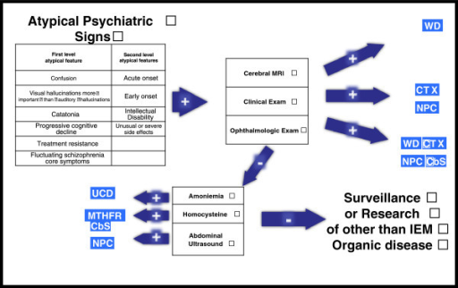 Diagnostic algorithm for diagnosing inborn errors of metabolism in patients with schizophrenia-like symptoms. Negative: If exams are negative and suspicion is high. Positive: Could lead to diagnoses or high suspicion of specific disease. MRI = magnetic resonance imaging; MTHFR-CbS = methylenetetrahydrofolate reductase-cystathionine beta-synthase; NP-C = Niemann-Pick disease type C; UCDs = urea cycle disorders, WD = Wilson disease.