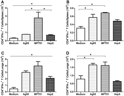 Levels of CD4+IFN-γ+ T cells induced by ex vivo stimulation with recombinant Ag85, MPT51, and HspX.Thirty days after vaccination, lung and spleen suspensions were stimulated exvivo with Ag85, MPT51, HspX, or medium alone. The number of cells positive for CD4 and IFN-γ was determined by flow cytometry. Lymphocytes were selected based on size and granularity. Gates were set to analyze CD4+ T cells, and then the fluorescence of antibodies detecting IFN-γ+ cells was recorded. (A–B) Spleen cells from mice vaccinated with (A) rBCG-CMX or (B) BCG. (C–D) Lung cells from mice vaccinated with (C) rBCG-CMX or (D) BCG. In A and C, all results were different from the medium stimulation. These data are representative of two independent experiments (N = 6, *p<0.05).
