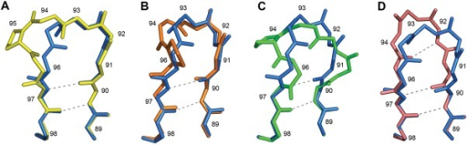 Canonical structures for CDR-L3. A: The most typical nine-residue canonical structure L3–9-cis7 (yellow) superimposed on L3-8-NP (blue). B: L3-8-NP (blue) and L3-8-P7 (orange). C: L3-8-NP (blue) and L3-8-P6 (green). D: L3-8-NP (blue) and L3-8-NP-sub (pink). For non-Pro residues only backbone atoms are shown. Pro95 in L3–9-cis7 and Pro94 in L3-8-P6 are cis, Pro96 in L3-8-P7 is trans. Main-chain hydrogen bonds are shown by dashed lines.