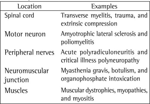 Location of the neuromuscular injuries and examples.