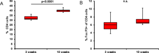 Tregs in 3- and 10-week-old rats. A: CD4 T cells in spleens of 3- and 10-week-old Lewis rats. Three-week-old rats have significantly fewer CD4 T cells, (n=11, p<0.0001). B: Amount of FoxP3+ CD4 T cells is similar in both age groups (n=11, p=0.85).