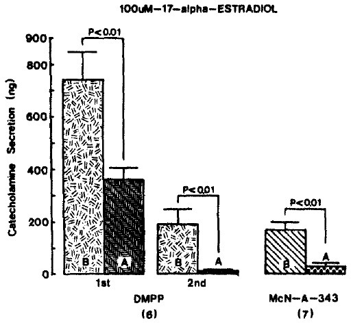 Influence of 100 uM 17-α-estradiol on nicotinic and musoarinio stimulated CA secretory responses. Other legends are the same as in Fig. 2 and 3.