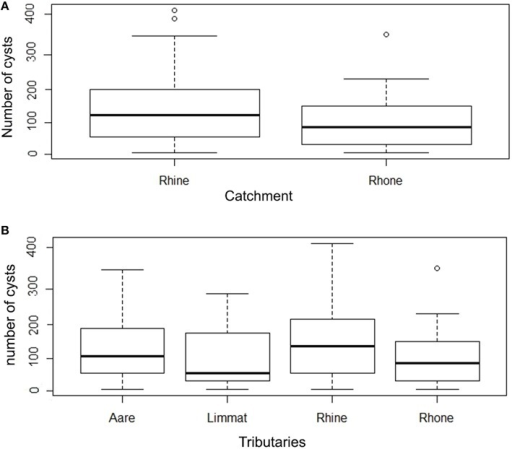 (A) Box plot of number of cysts per gill arch in Rhine and Rhone catchment. (B) Number of cysts per gill arch in tributaries (Aare, Limmat, and Rhine belonging to the Rhine catchment; Rhone belonging to the Rhone catchment) (note the logarithmic scale in the y axis).
