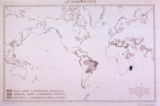 <p>Map showing distribution of three forms of leishmaniasis in the world.</p>