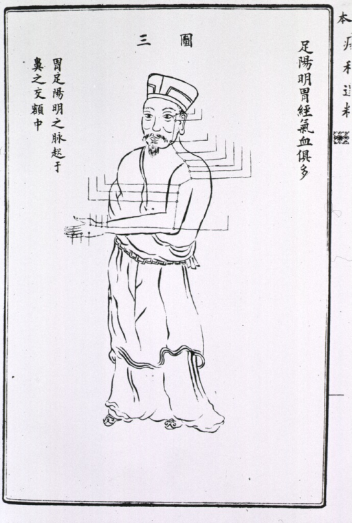 <p>Full length male figure showing acupuncture points on stomach meridian.</p>