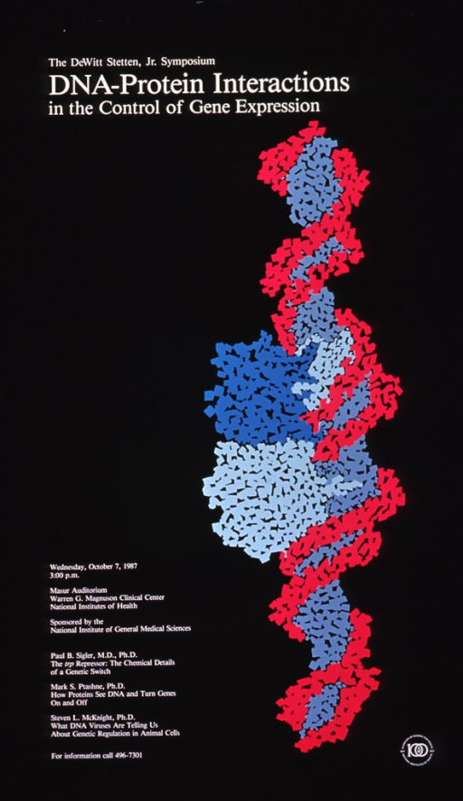 <p>Black poster with white writing announcing symposium Oct. 1987.  Also lists date, time, location, sponsor, speakers, and phone number for more information.  Fuchsia, gray, teal, and light green double helix is central image on poster.  NIH Centennial logo appears in bottom right corner.</p>
